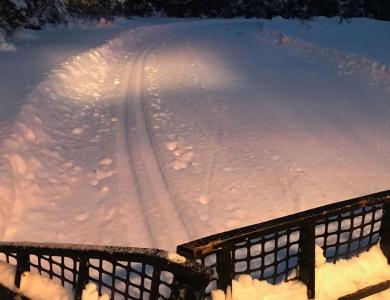 Esquí de fondo